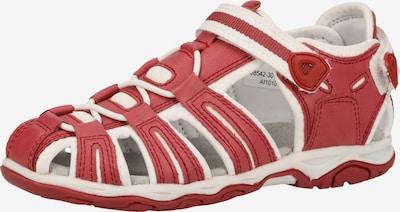 KICKERS Sandalen in rot / weiß, Produktansicht