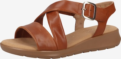 GABOR Sandalen met riem in de kleur Bruin, Productweergave