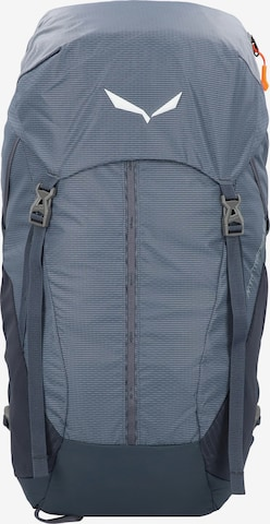 SALEWA Sports Backpack in Grey