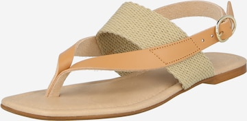 ABOUT YOU Sandale 'Amanda' in Braun
