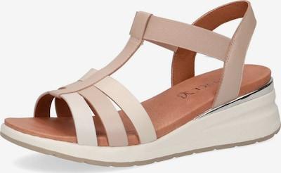 CAPRICE Sandalen in beige, Produktansicht
