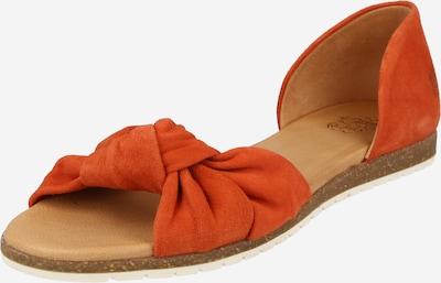 Balerini Apple of Eden pe portocaliu, Vizualizare produs