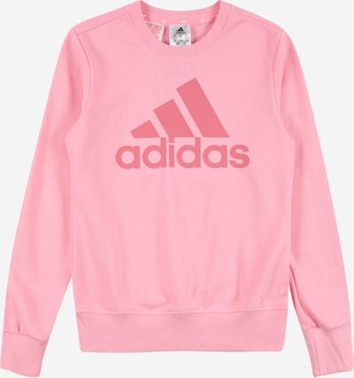 ADIDAS ORIGINALS Sportsweatshirt in pitaya / hellpink, Produktansicht