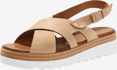 INUOVO Sandalen in braun / weiß, Produktansicht