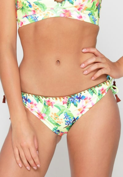 LingaDore Bikinibroek in de kleur Gemengde kleuren, Modelweergave