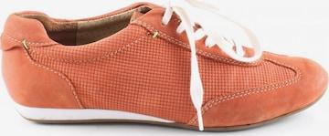 SALAMANDER Sneakers & Trainers in 35,5 in Orange