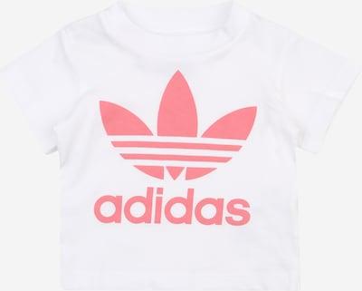 ADIDAS ORIGINALS Camiseta en rosa / blanco, Vista del producto