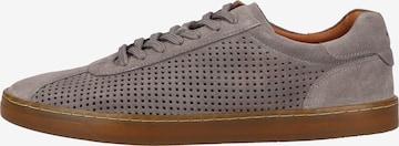 Baskets basses Marc Shoes en gris