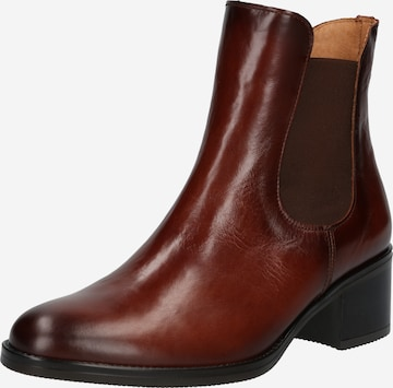 GABOR Chelsea Boots in Brown