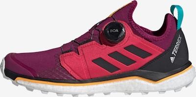 ADIDAS PERFORMANCE Trailrunning-Schuh in lila, Produktansicht