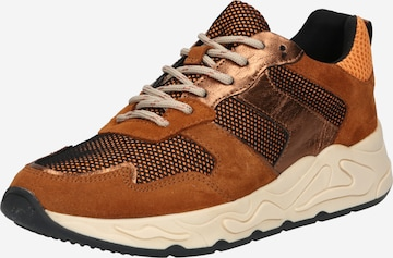PS Poelman Sneakers in Mixed colors