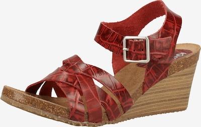 KICKERS Sandalen met riem in de kleur Roestrood, Productweergave