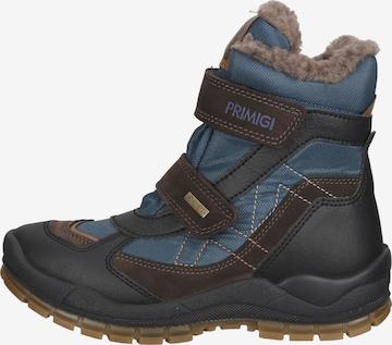 Chaussure basse PRIMIGI en bleu
