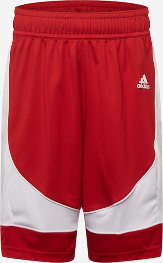 ADIDAS PERFORMANCE Pantalon de sport en rouge feu / blanc, Vue avec produit