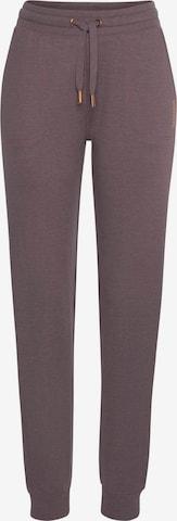 Pantalon BENCH en violet