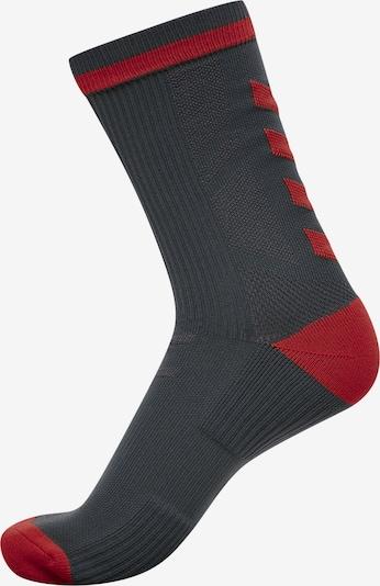 Hummel Socken in dunkelgrau / dunkelrot, Produktansicht