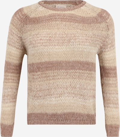 ONLY Carmakoma Sweater 'MAYA' in Beige / Nude / Brown, Item view