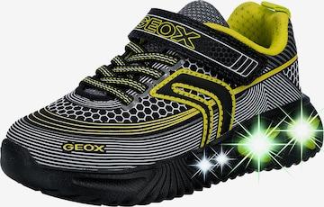 GEOX Schuh in Schwarz