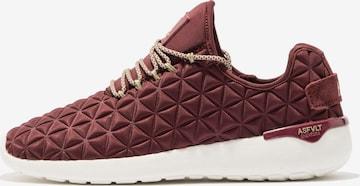 ASFVLT Sneakers 'SPEED SOCKS' in Brown