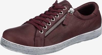 ANDREA CONTI Sneaker in burgunder, Produktansicht