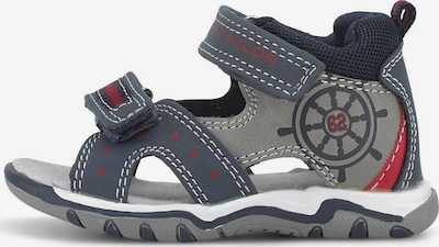 TOM TAILOR Open schoenen in de kleur Navy / Grijs / Donkerrood, Productweergave