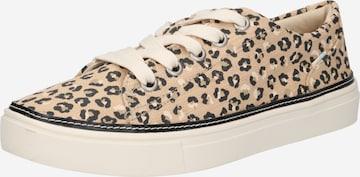 TOMS Sneakers 'ALEX' in Beige