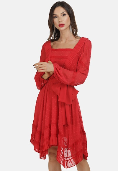 faina Kleid in grenadine, Modelansicht