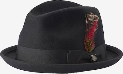 Brixton Chapeaux 'GAIN' en noir, Vue avec produit