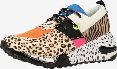 STEVE MADDEN Sneaker in mischfarben, Produktansicht