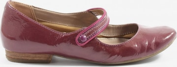 CLARKS Flats & Loafers in 37 in Pink