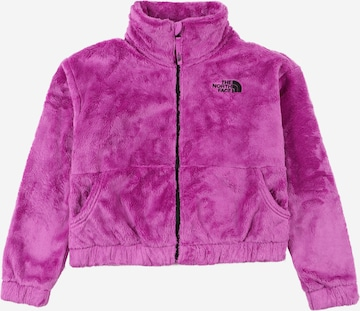 Veste d'hiver THE NORTH FACE en violet