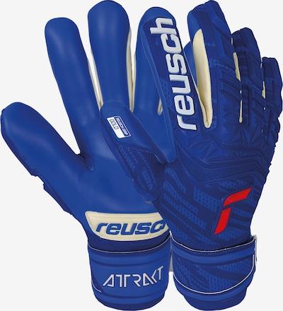 REUSCH Torwarthandschuhe 'Attrakt Freegel Gold Finger Support' in blau, Produktansicht