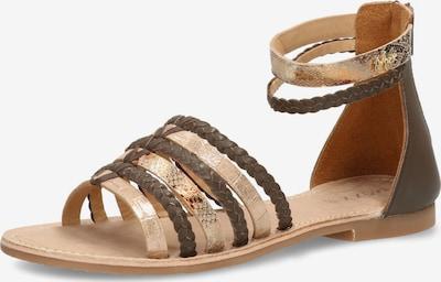 MEXX Sandale 'GALATINA' in beige / mokka / gold, Produktansicht