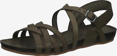 COSMOS COMFORT Sandalen in grün, Produktansicht