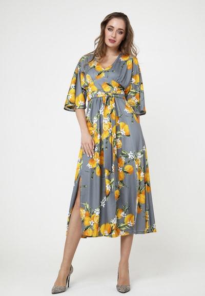 Madam-T Sommerkleid 'NITSA' in mischfarben, Modelansicht
