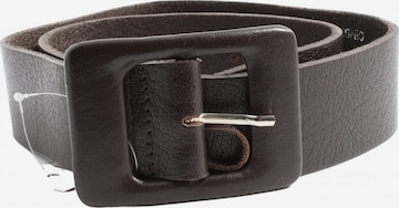 Prego Belt in XS-XL in Brown