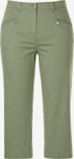 Ulla Popken Hose in grün, Produktansicht