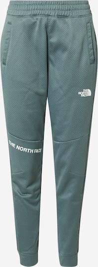 THE NORTH FACE Sporthose en smaragd / weiß, Vue avec produit
