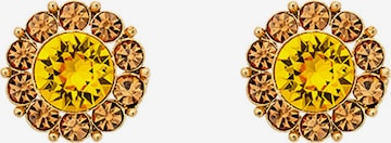 LILY AND ROSE Earrings 'Miss Sofia' in Gold