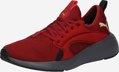 PUMA Chaussure de course en rouge foncé, Vue avec produit