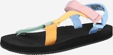 GAP Sandaal, värv segavärvid