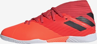 ADIDAS PERFORMANCE Sportschuh' Nemeziz 19.3' in orange / koralle / rot, Produktansicht