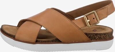 CLARKS Sandalen in braun, Produktansicht
