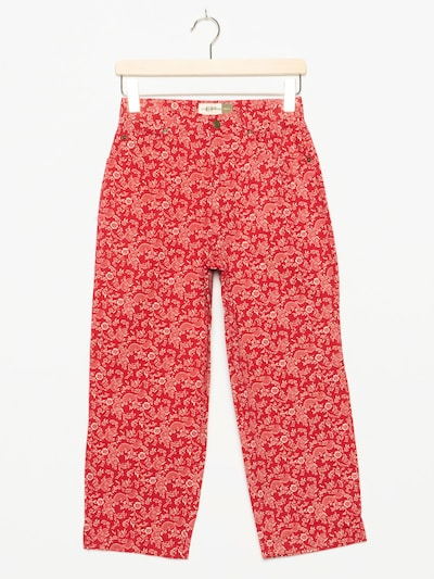 Evan Picone Jeans in 28 in rot, Produktansicht