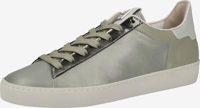 Högl Sneaker in pastellgrün / hellgrün, Produktansicht