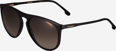 Carrera Sonnenbrille in schwarz, Produktansicht