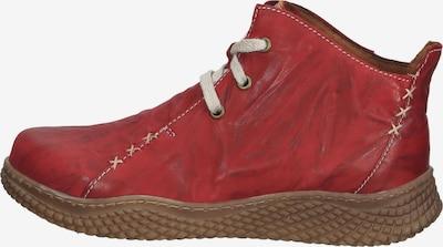 JOSEF SEIBEL Schnürschuhe 'Amelie' in creme / rot, Produktansicht