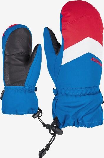 ZIENER Skihandschuh 'LETTERO AS(R)' in blau / rot / weiß, Produktansicht