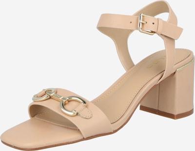 Sandalo con cinturino 'ALINIFLEX' ALDO di colore beige chiaro, Visualizzazione prodotti