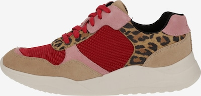 CLARKS Sneaker in mischfarben, Produktansicht